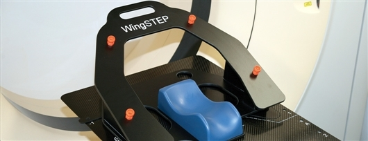 wingstep_a1.jpg
